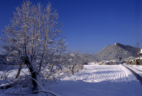 Yamaguchi_snow